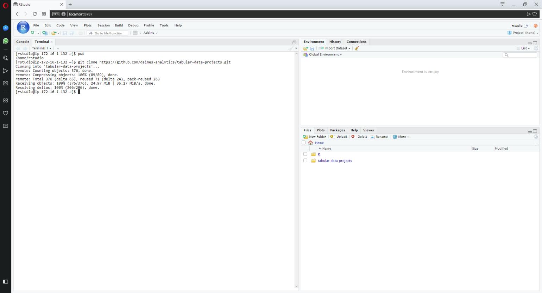 provision_aws_linux_R_server-3